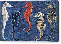 Close-up Of Five Seahorses Side By Side  Acrylic Print by English School