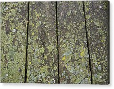 Close Up Of The Wooden Planks Acrylic Print by Perry Mastrovito