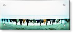 Clothes Drying At The Riverbank, Ganges Acrylic Print by Panoramic Images
