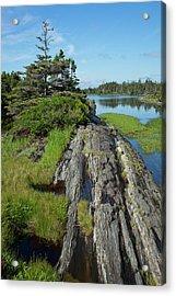 Coast East Of Lunenburg  Nova Scotia Acrylic Print by Carl Bruemmer