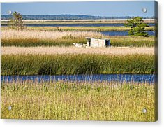Coastal Marshlands With Old Fishing Boat Acrylic Print by Bill Swindaman