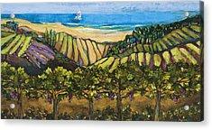 California Coastal Vineyards And Sail Boat Acrylic Print by Jen Norton