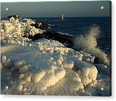 Coated In Ice Acrylic Print by James Peterson