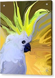Cockatoo Acrylic Print by Chris Butler