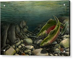 Coho Fishing Acrylic Print by Kim Hunter