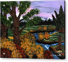 Coldest Mountain Brook Acrylic Print by Barbara Griffin