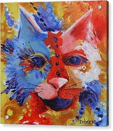 Color Cat Acrylic Print by Deb Harvey