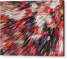 Color Explosion #02 Acrylic Print by Ausra Huntington nee Paulauskaite