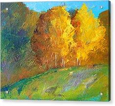 Color Acrylic Print by Nancy Merkle