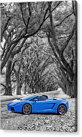 Color Your World - Lamborghini Gallardo Acrylic Print by Steve Harrington