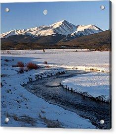 Colorado 14er Mt. Elbert Acrylic Print by Aaron Spong