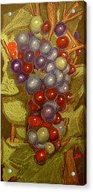 Colored Grapes Acrylic Print by Joseph Hawkins