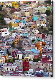 Colored Homes Acrylic Print by Douglas J Fisher