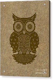 Colored Owl 3 Of 4  Acrylic Print by Kyle Wood