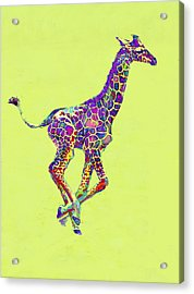 Colorful Baby Giraffe Acrylic Print by Jane Schnetlage