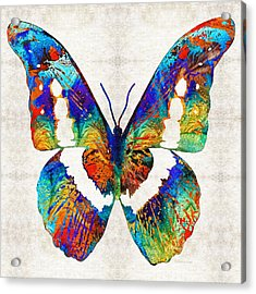 Colorful Butterfly Art By Sharon Cummings Acrylic Print by Sharon Cummings
