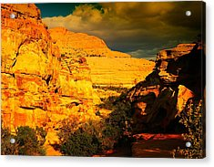 Colorful Capital Reef Acrylic Print by Jeff Swan