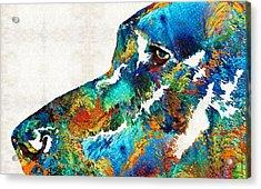 Colorful Dog Art - Loving Eyes - By Sharon Cummings  Acrylic Print by Sharon Cummings