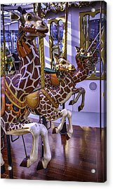 Colorful Giraffes Carrousel Acrylic Print by Garry Gay