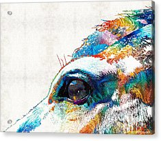 Colorful Horse Art - A Gentle Sol - Sharon Cummings Acrylic Print by Sharon Cummings