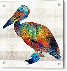 Colorful Pelican Art By Sharon Cummings Acrylic Print by Sharon Cummings