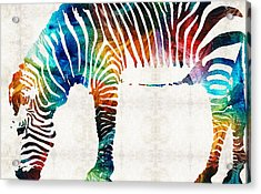 Colorful Zebra Art By Sharon Cummings Acrylic Print by Sharon Cummings