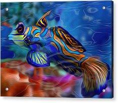 Colors Below 2 Acrylic Print by Jack Zulli