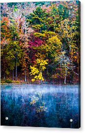 Colors In Early Morning Fog Acrylic Print by Parker Cunningham