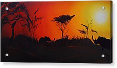 Colors Of Africa 45 Acrylic Print by Portland Art Creations