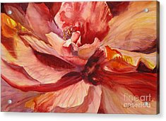 Colourful Hibiscus Acrylic Print by Mohamed Hirji