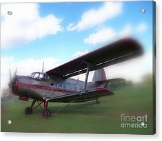 Come Fly With Me Acrylic Print by Lingfai Leung