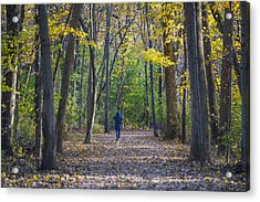 Come For A Walk Acrylic Print by Sebastian Musial