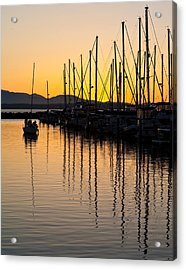 Coming In Acrylic Print by Mike Reid