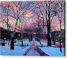 Snowfall On Comm Ave Boston  Acrylic Print by Sue Birkenshaw
