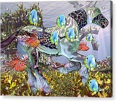 Common Ground Acrylic Print by Betsy C Knapp