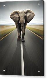 Heavy Duty Transport / Travel By Road Acrylic Print by Johan Swanepoel