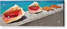 Concha Line Acrylic Print by DM Photography- Dan Mongosa