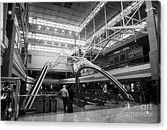 concourse B at Denver International Airport Colorado USA Acrylic Print by Joe Fox