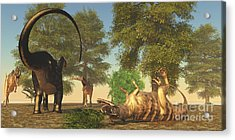 Confrontation Between An Apatosaurus Acrylic Print by Corey Ford