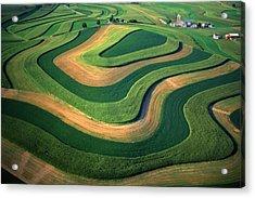 Contour Farm Art Aerial  Acrylic Print by Blair Seitz