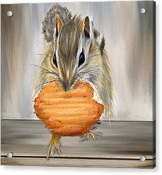 Cookie Time- Squirrel Eating A Cookie Acrylic Print by Lourry Legarde
