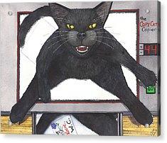 Copy Cat Acrylic Print by Catherine G McElroy