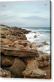 Coquina Style Acrylic Print by Julie Wilcox