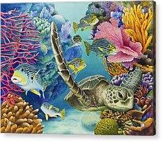 Coral Canyon Acrylic Print by Carolyn Steele