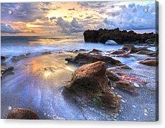 Coral Garden Acrylic Print by Debra and Dave Vanderlaan