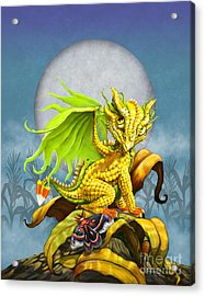 Corn Dragon Acrylic Print by Stanley Morrison
