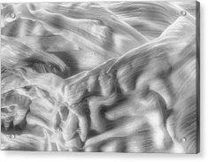 Corn Husk - A Beautiful Chaos Acrylic Print by Tom Mc Nemar