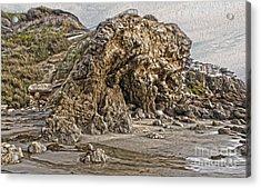 Corona Del Mar Sea Cave Acrylic Print by Gregory Dyer