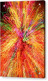 Cosmic Phenomenon Or Christmas Lights Acrylic Print by Barbara West