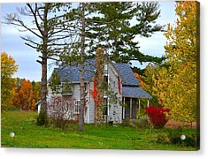 Country Cottage Acrylic Print by Julie Dant
